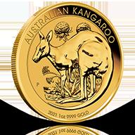 Australian Gold Kangaroos
