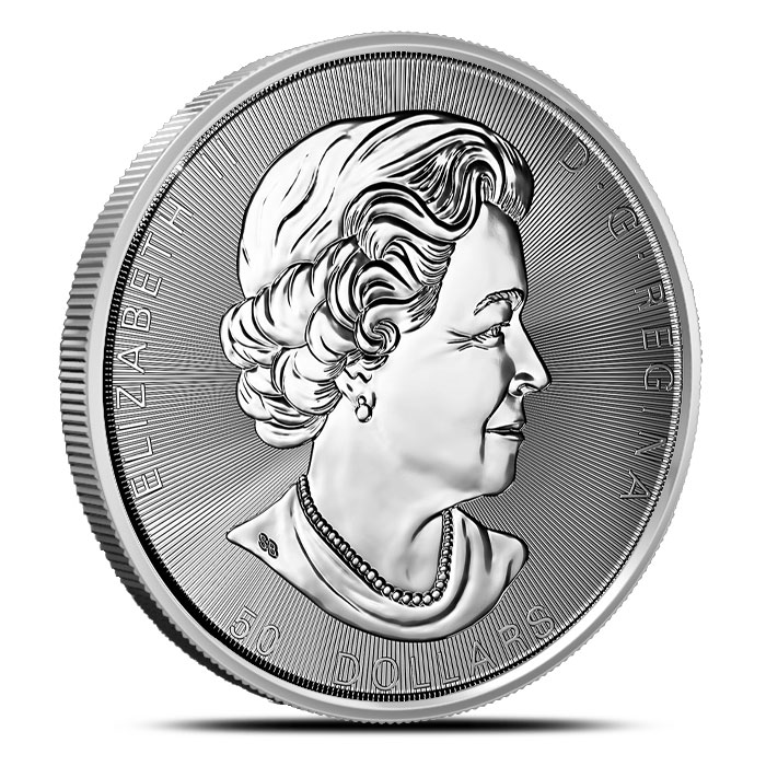 10 oz Silver Magnificent Maple Coin