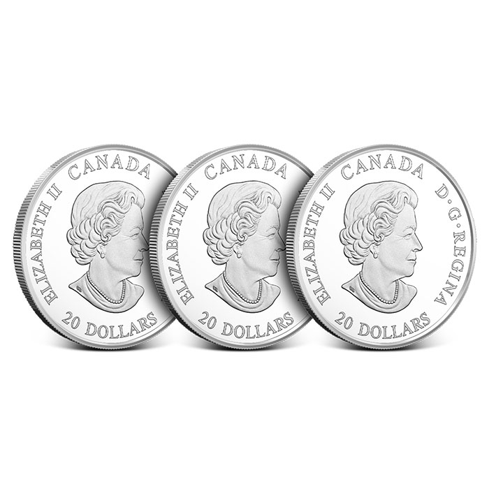 Complete Set 2018 - 1 oz Silver Coin | Norse Figureheads
