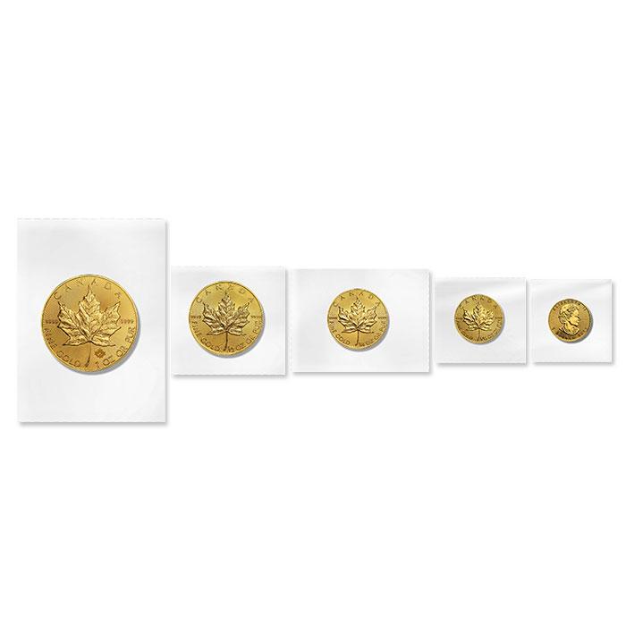 5 Piece Set Flex Pack Canadian Gold Maple Leaves