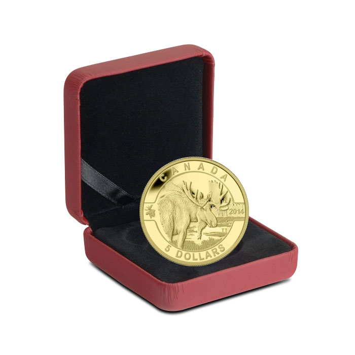 2014 1/10 oz $5 Gold Moose | O Canada Series Clamshell