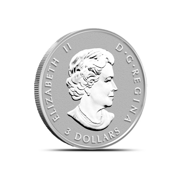 2014 Canadian Silver Fractional Set - Maple Leaf Quarter oz Reverse
