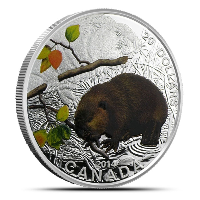 2014 Silver $20 Baby Animals   The Beaver