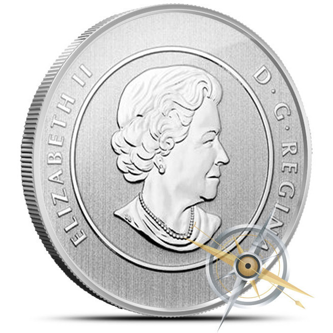 2013 Iceberg & Whale Canadian 20 for 20 Fine Silver Coin Reverse