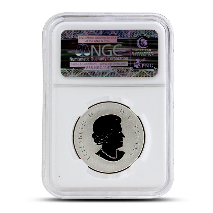 2015 1/2 oz $10 Silver Year of the Sheep | NGC SP69 Reverse