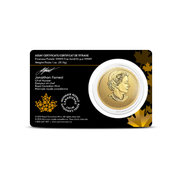Gold Elk Coin | Call of the Wild