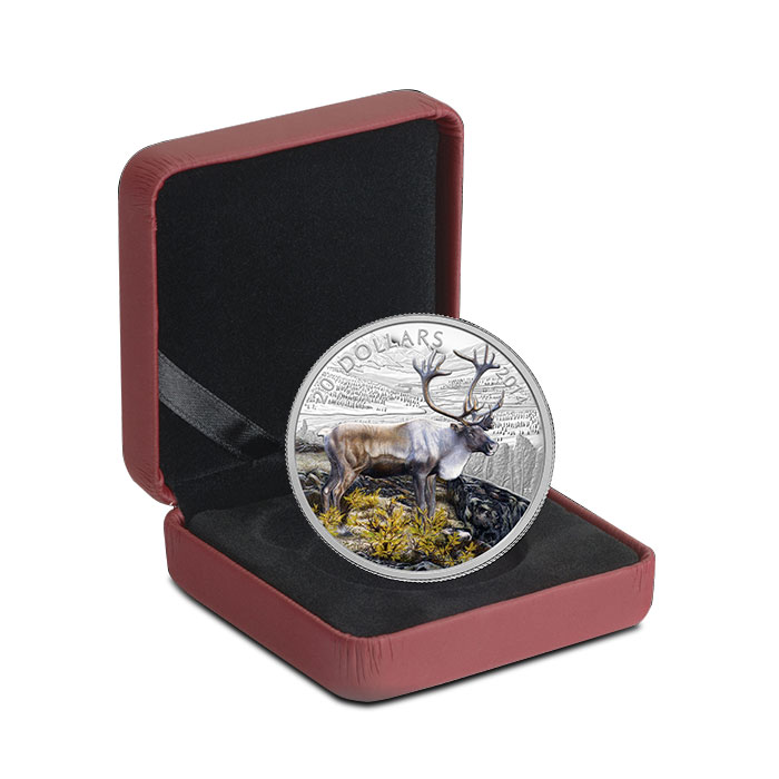 2014 1 oz Canadian Silver The Caribou Colorized Box