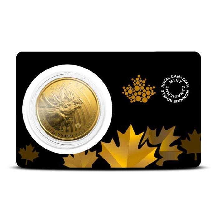 2019 Canadian 1 oz Gold Moose | Call of the Wild